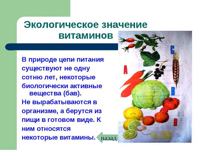 Экологическое значение витаминов В природе цепи питания существуют не одну со...