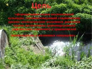 Цель «формирования основ экологической культуры, соответствующей современному