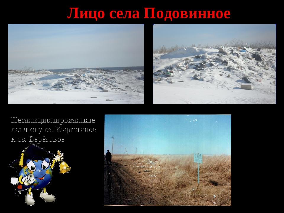 Лицо села Подовинное Несанкционированные свалки у оз. Кирпичное и оз. Берёзовое