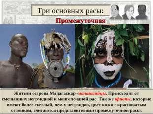 Жители острова Мадагаскар -малагасийцы. Происходят от смешанных негроидной и