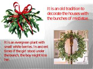It is an old tradition to decorate the houses with the bunches of mistletoe.