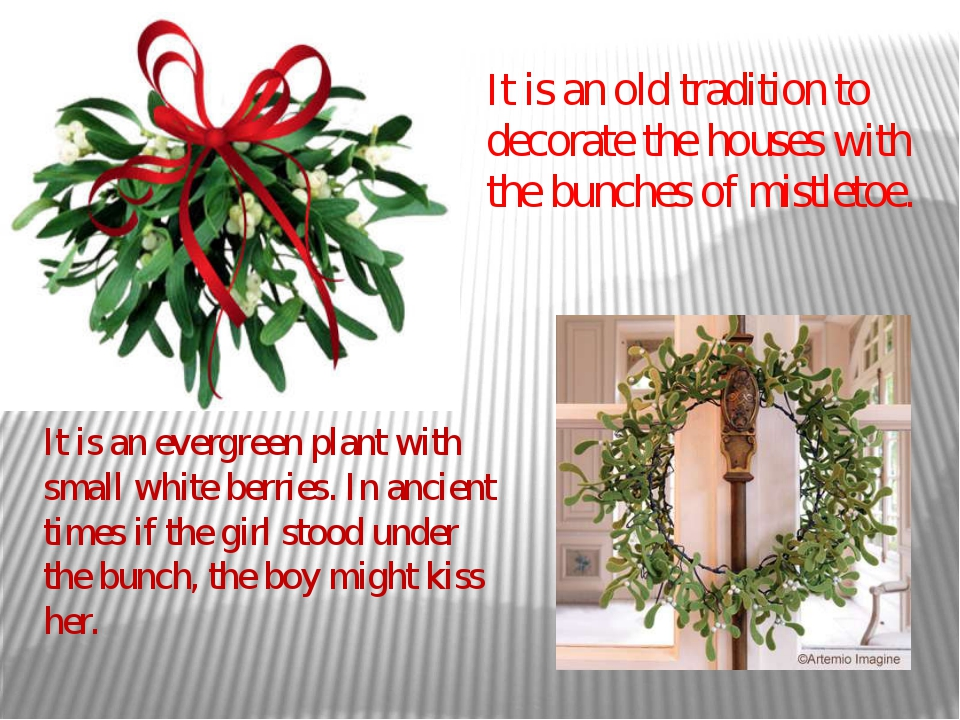 It is an old tradition to decorate the houses with the bunches of mistletoe....