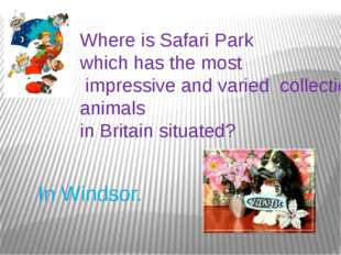 Where is Safari Park which has the most impressive and varied collections of