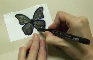 Бабочка из бутылки из Египта 3