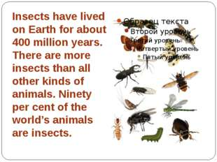 Insects have lived on Earth for about 400 million years. There are more insec