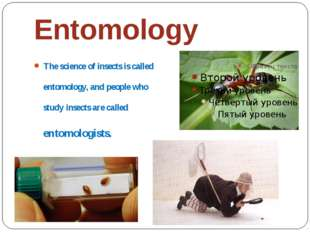 Entomology The science of insects is called entomology, and people who study