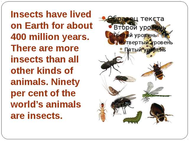 Insects have lived on Earth for about 400 million years. There are more insec...
