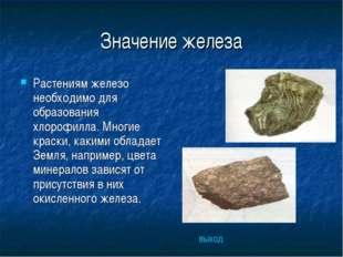 Значение железа Растениям железо необходимо для образования хлорофилла. Многи