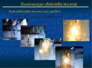 Химические свойства железа Взаимодействие железа с кислородом: Fe + O2 = Fe3O
