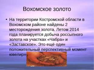 Вохомское золото На территории Костромской области в Вохомском районе найдены