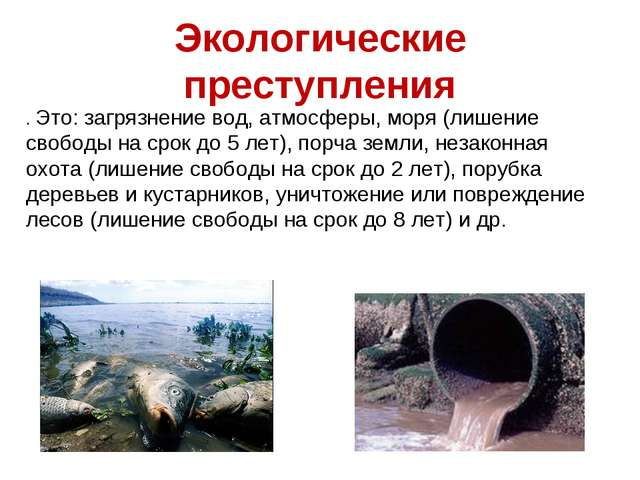 Экологические преступления . Это: загрязнение вод, атмосферы, моря (лишение с...