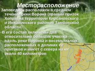 Месторасположение Заповедник расположен в среднем течении реки Ворона (правый