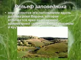Рельеф заповедника определяется его положением вдоль долины реки Ворона, кото