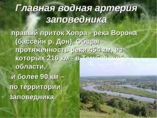 Главная водная артерия заповедника правый приток Хопра - река Ворона (бассейн