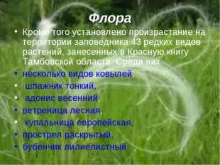 Флора Кроме того установлено произрастание на территории заповедника 43 редки