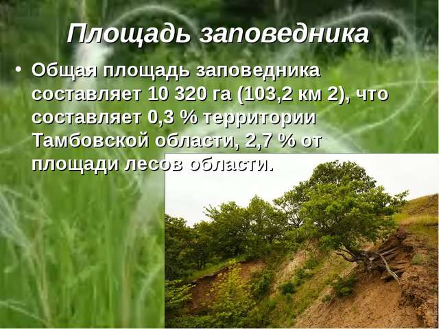 Площадь заповедника Общая площадь заповедника составляет 10 320 га (103,2 км...