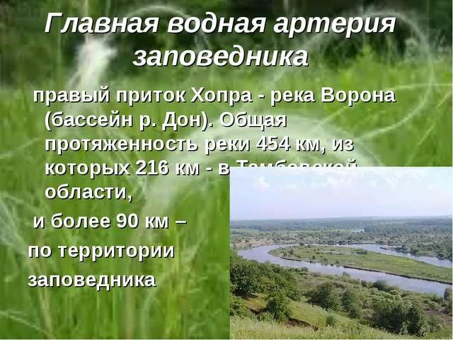 Главная водная артерия заповедника правый приток Хопра - река Ворона (бассейн...