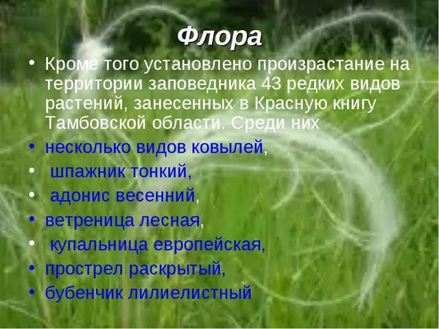 Флора Кроме того установлено произрастание на территории заповедника 43 редки...