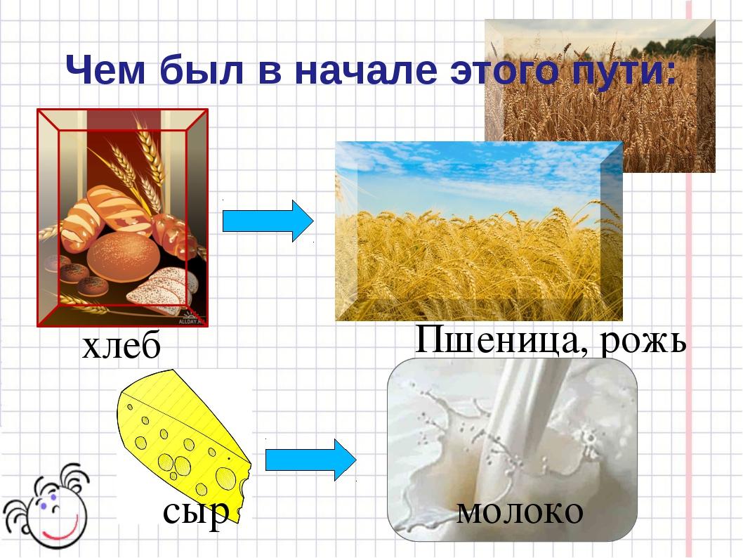 хлеб Пшеница, рожь сыр молоко Чем был в начале этого пути: