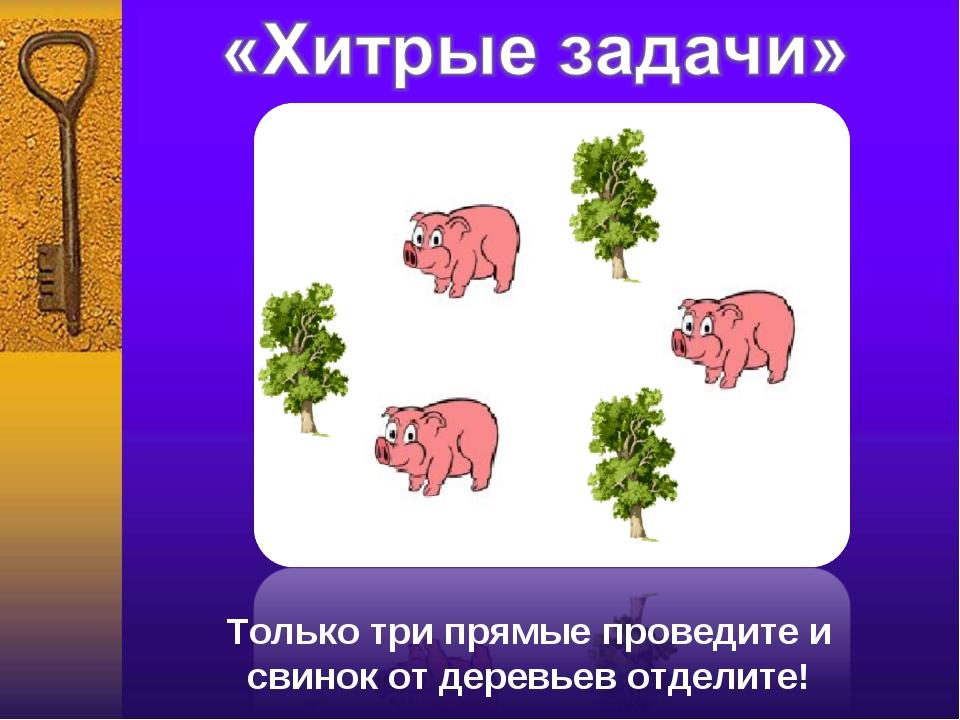 Только три прямые проведите и свинок от деревьев отделите!