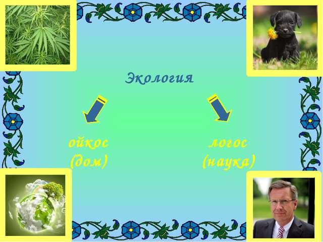 Экология ойкос (дом) логос (наука)