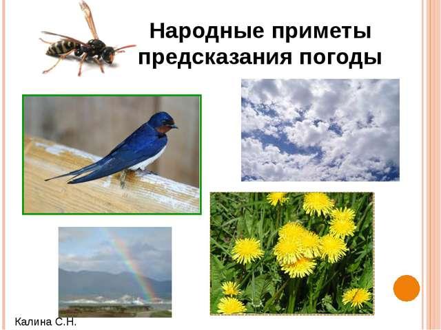 Народные приметы предсказания погоды Калина С.Н.