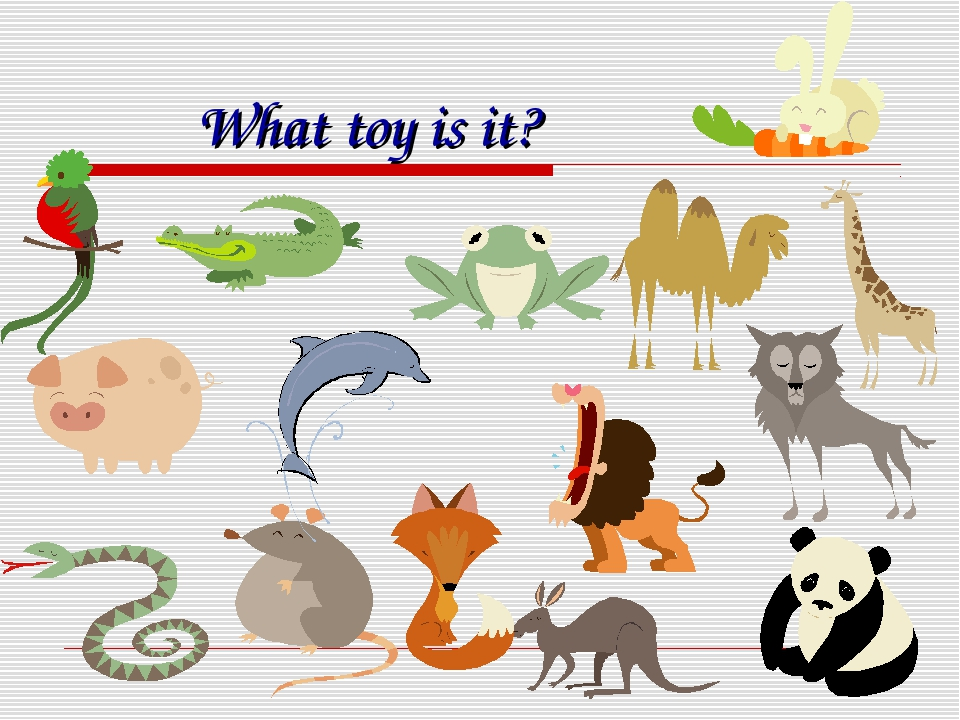 What toy is it?