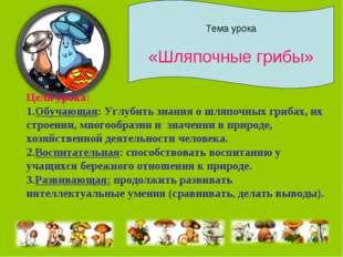Тема урока «Шляпочные грибы» Цели урока: Обучающая: Углубить знания о шляпочн