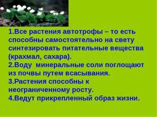 1.Все растения автотрофы – то есть способны самостоятельно на свету синтезиро