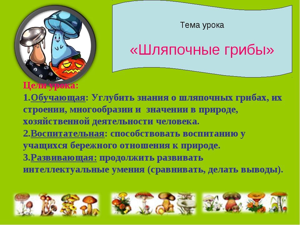 Тема урока «Шляпочные грибы» Цели урока: Обучающая: Углубить знания о шляпочн...