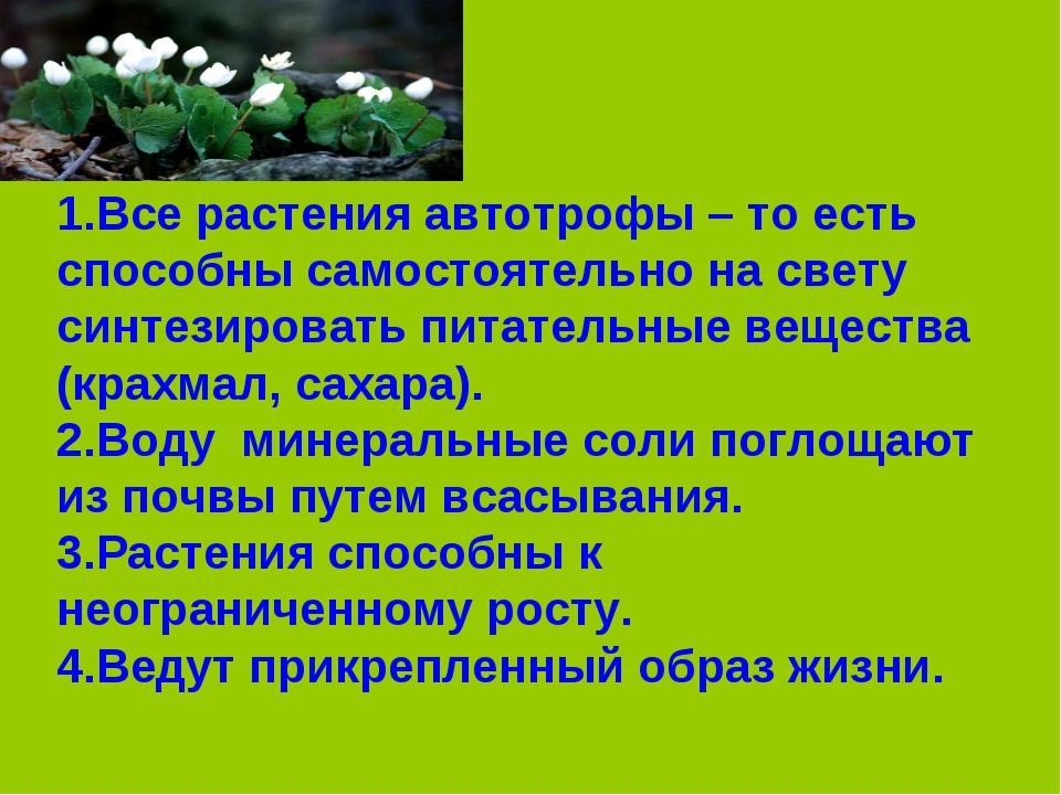 1.Все растения автотрофы – то есть способны самостоятельно на свету синтезиро...