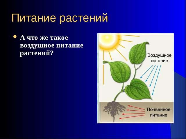 Питание растений А что же такое воздушное питание растений?