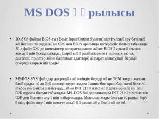 MS DOS құрылысы IO.SYS файлы BIOS-ты (Basic Input/Output System) кіргізу/шыға
