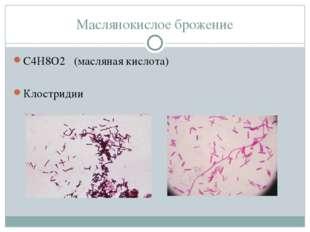 Маслянокислое брожение С4Н8О2 (масляная кислота) Клостридии