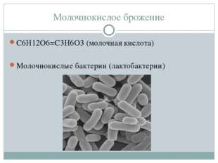 Молочнокислое брожение С6Н12О6=С3Н6О3 (молочная кислота) Молочнокислые бактер
