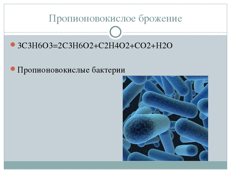 Пропионовокислое брожение 3С3Н6О3=2С3Н6О2+С2Н4О2+СО2+Н2О Пропионовокислые бак...