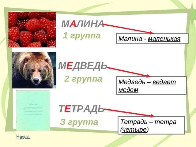 МЕДВЕДЬ МАЛИНА ТЕТРАДЬ 1 группа 2 группа З группа Малина - маленькая Медведь...
