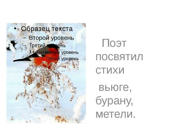 Поэт посвятил стихи вьюге, бурану, метели.
