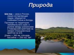 Природа Ши́лка— река в России, левая составляющая Амура, образуется слиянием