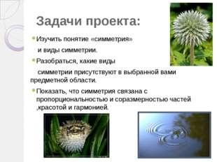 Задачи проекта: Изучить понятие «симметрия» и виды симметрии. Разобраться, ка