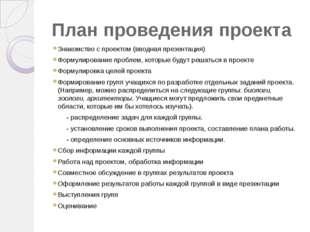 План проведения проекта Знакомство с проектом (вводная презентация) Формулиро