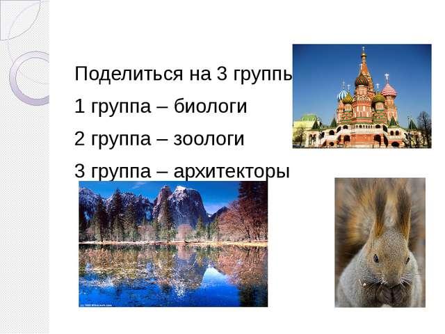 Поделиться на 3 группы: 1 группа – биологи 2 группа – зоологи 3 группа – арх...