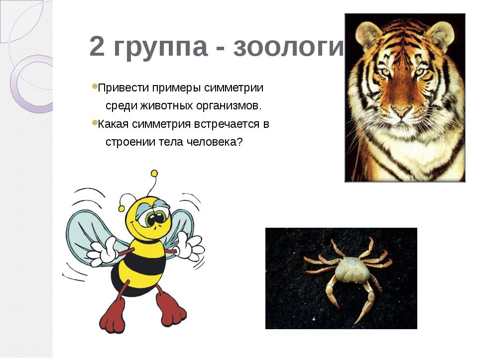 2 группа - зоологи Привести примеры симметрии среди животных организмов. Кака...
