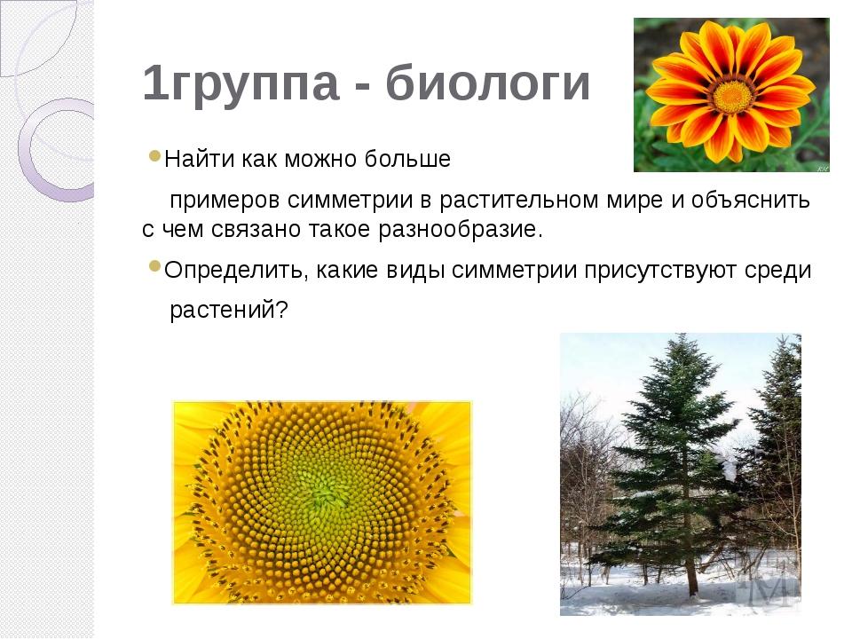 1группа - биологи Найти как можно больше примеров симметрии в растительном ми...