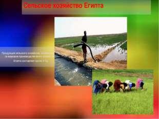 Продукция сельского хозяйства, особенно хлопок (в мировом производстве всего