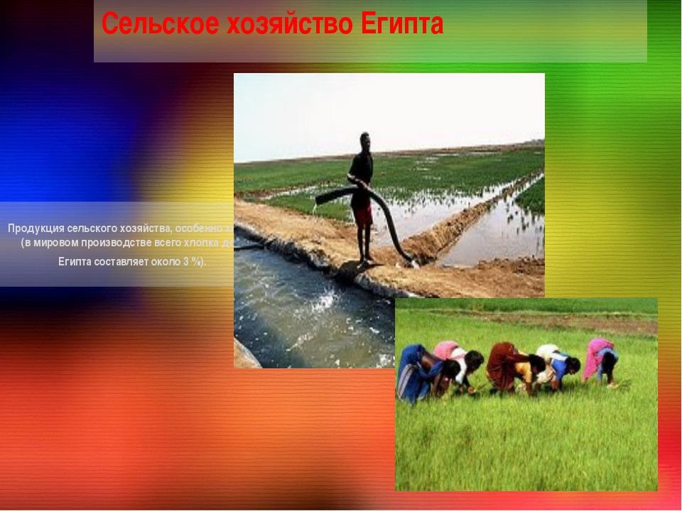 Продукция сельского хозяйства, особенно хлопок (в мировом производстве всего...