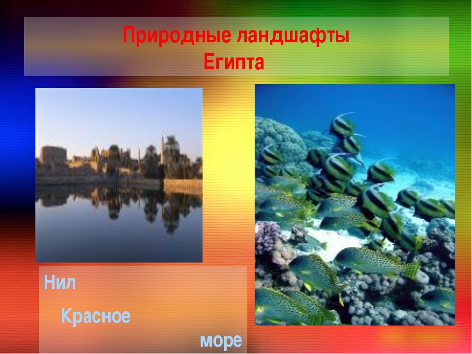 Природные ландшафты Египта Нил Красное море