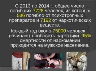 С 2013 по 2014 г. общее число погибших 7728 человек, из которых 536 погибло
