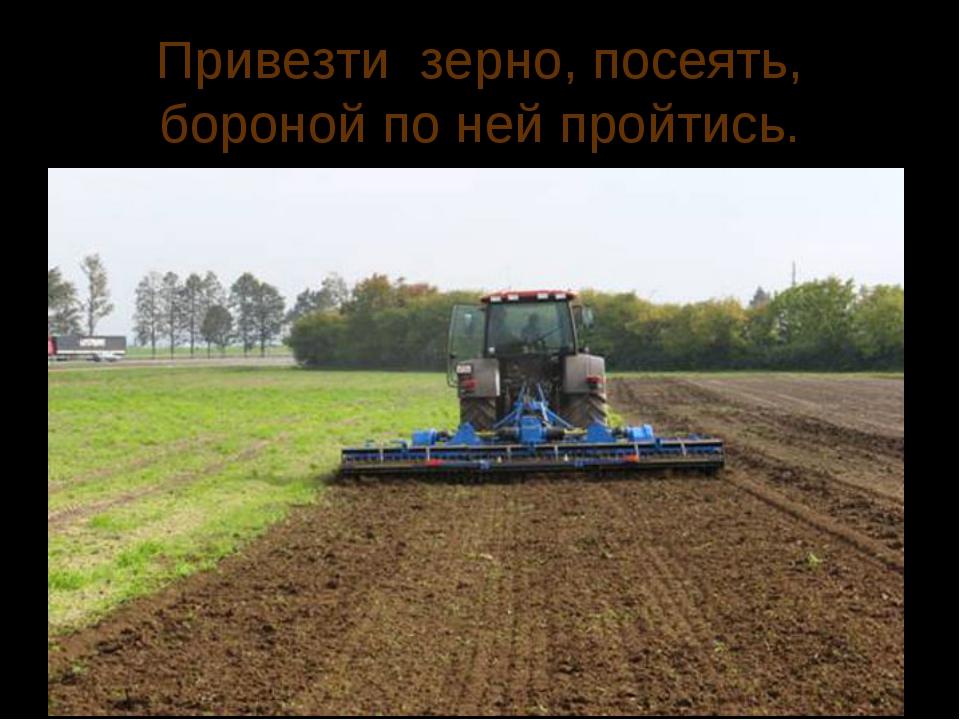 Привезти зерно, посеять, бороной по ней пройтись.