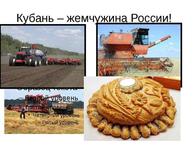 Кубань – жемчужина России!